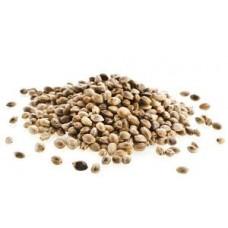 Семена марихуаны и их воздействие на организм человека